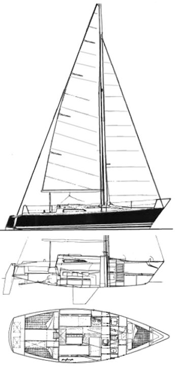 ALBATROS 950 drawing