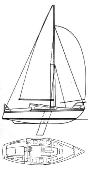 AUSTRAL 24 drawing