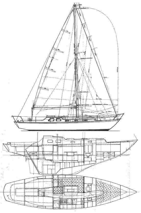 BACCHANT IV drawing