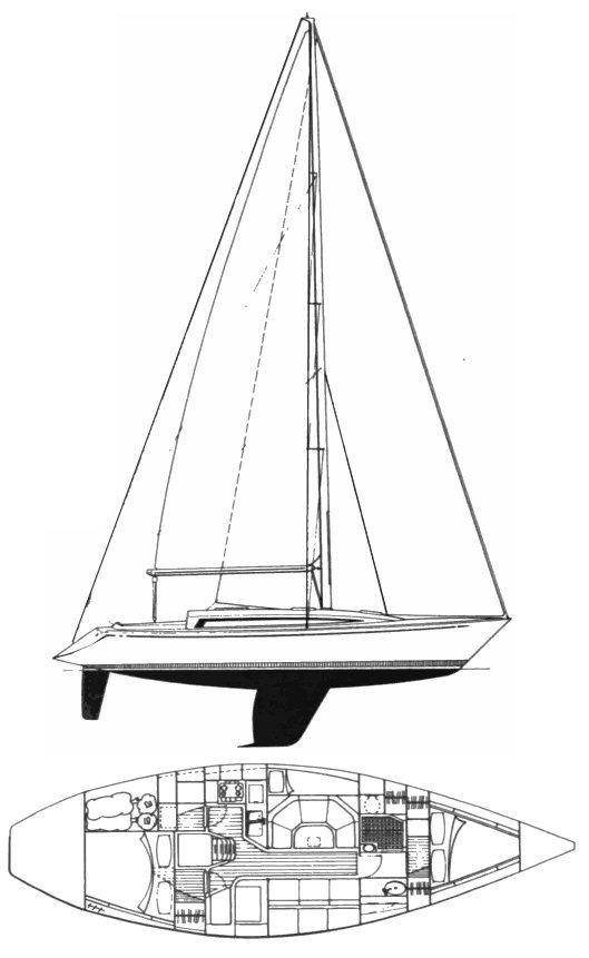 BELLIURE 2.5 drawing