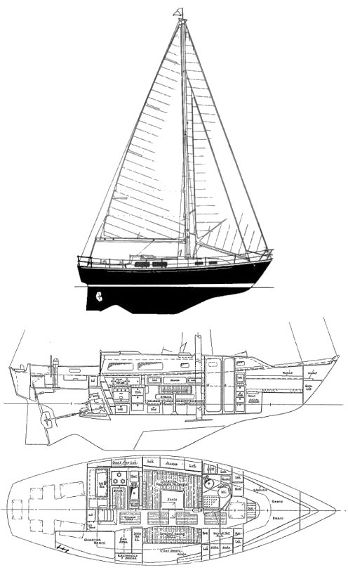 CABOT 36 drawing