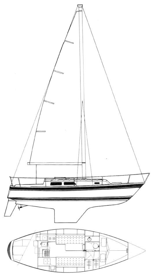 CAL 31 drawing