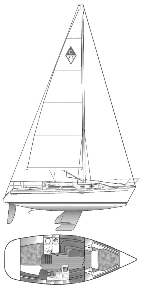 CATALINA 310 drawing