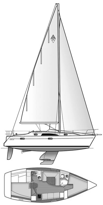 CATALINA 315 drawing