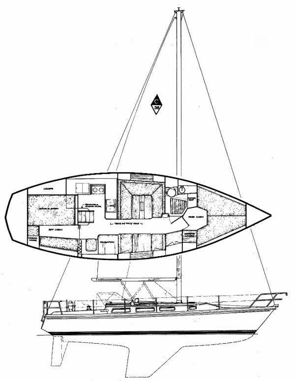 CATALINA 36 drawing