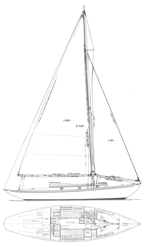 COASTWISE CRUISER (#675) drawing