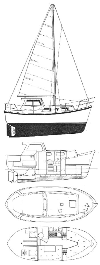 WATSON 23 (COLVIC) drawing