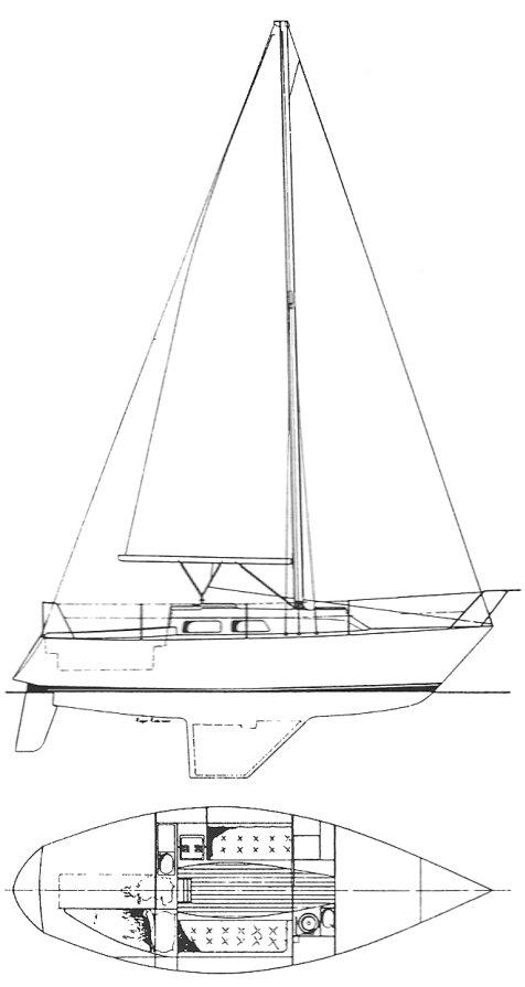 CONTESSA 28 drawing