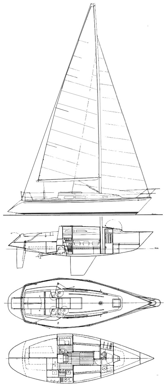CONTESSA 33 drawing