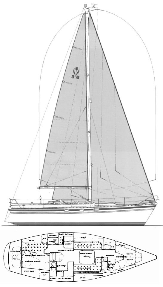 Contest 36S drawing on sailboatdata.com