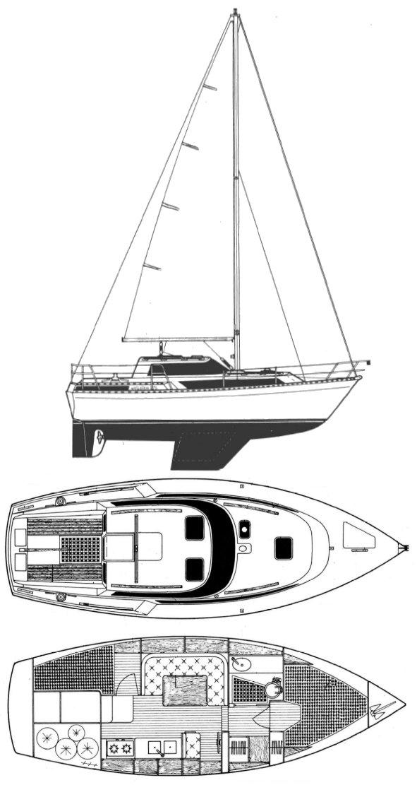 EVASION 29 (BENETEAU) drawing
