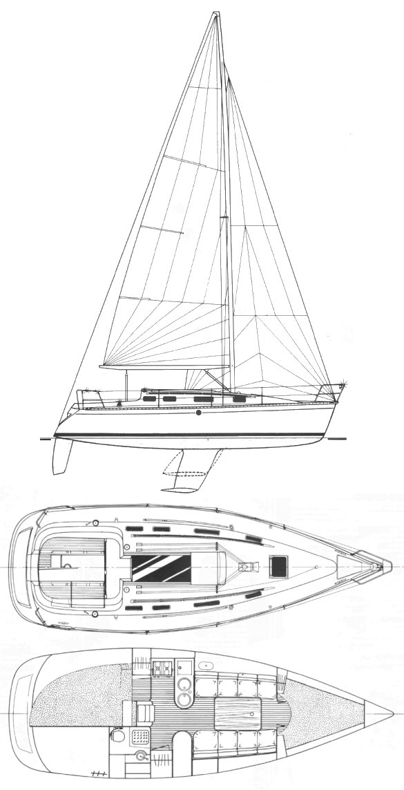 FIRST 310 (BENETEAU) drawing
