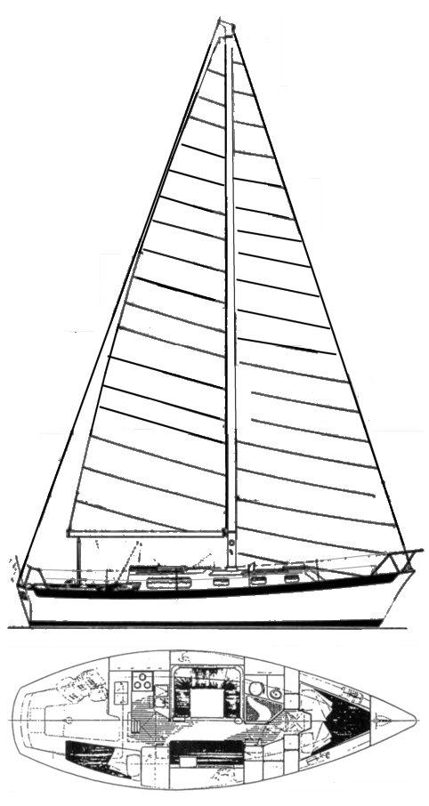 WEST INDIES 36 (MORGAN) drawing