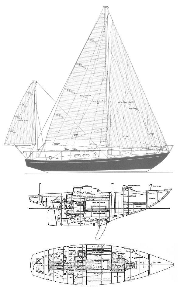 INVICTA (TRIPP) drawing