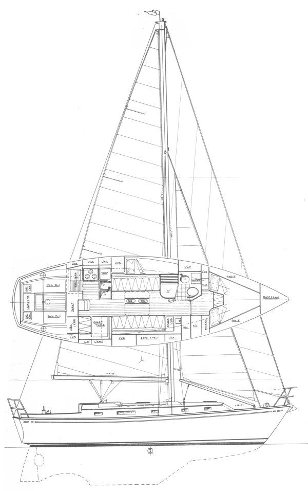 KAIULANI 34 drawing