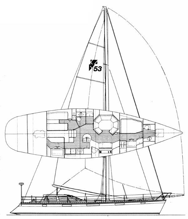 BOUGAINVILLAEA 54 drawing