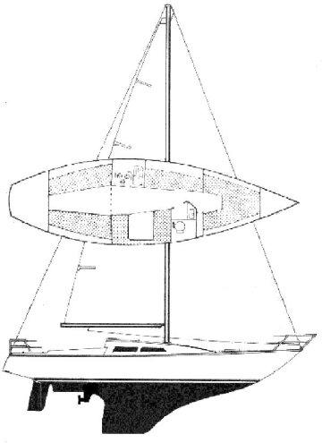 KARATE SPORT drawing
