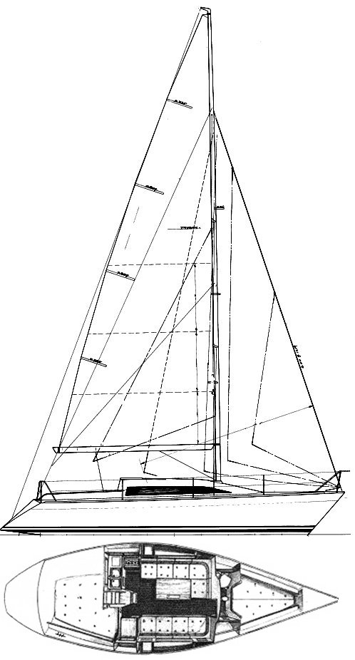 MAESTRO 31 drawing