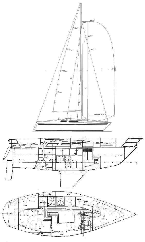 MAMBA 29 drawing