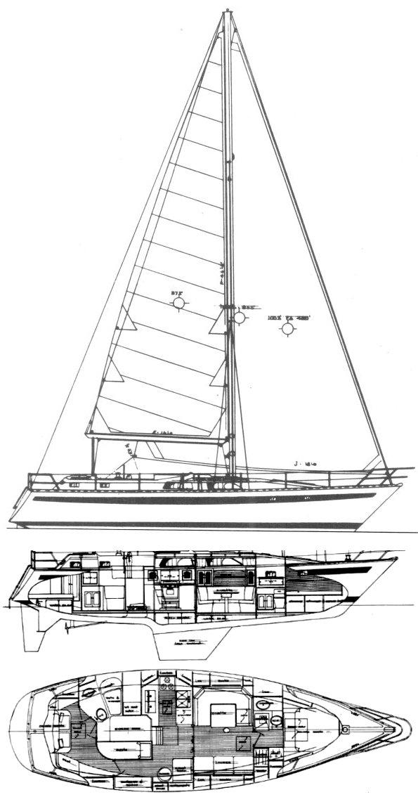MAPLE LEAF 45 drawing