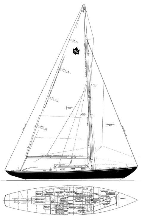 MAPLE LEAF ONE-DESIGN drawing