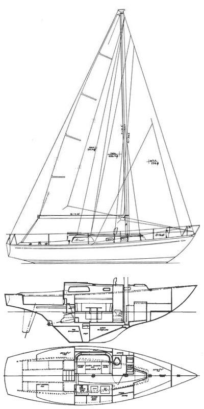 MEDALIST 33 MKII/III (LE COMTE) drawing