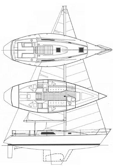 MORGAN 36-4/6 drawing