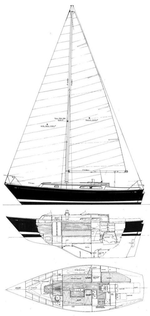 MORGAN 31 (LAVRANOS) drawing