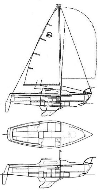 OLYMPIC DOLPHIN 23 drawing