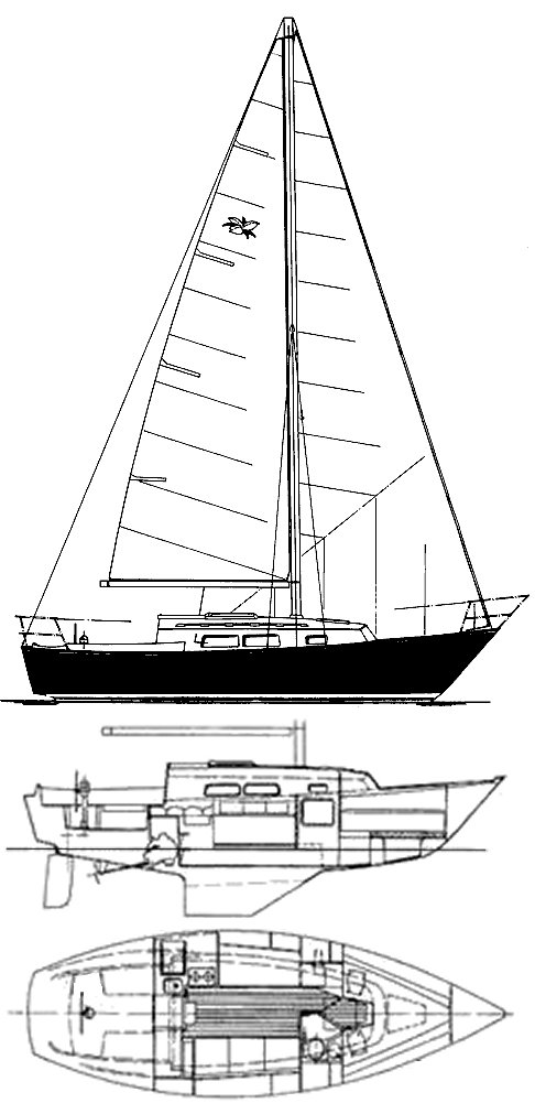 ONTARIO 28 drawing