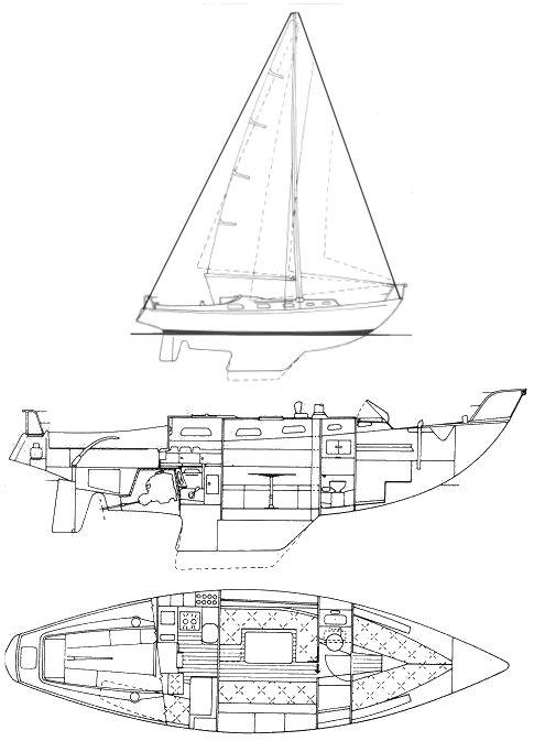 RIVAL 34 drawing
