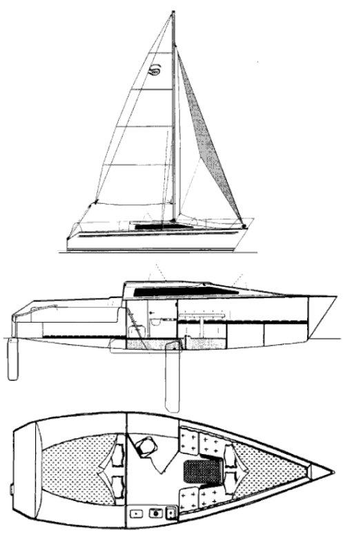 SANTANA 2023A drawing