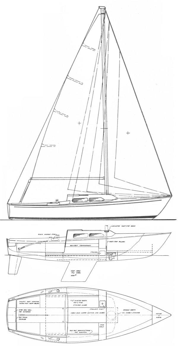 SANTANA 22 drawing