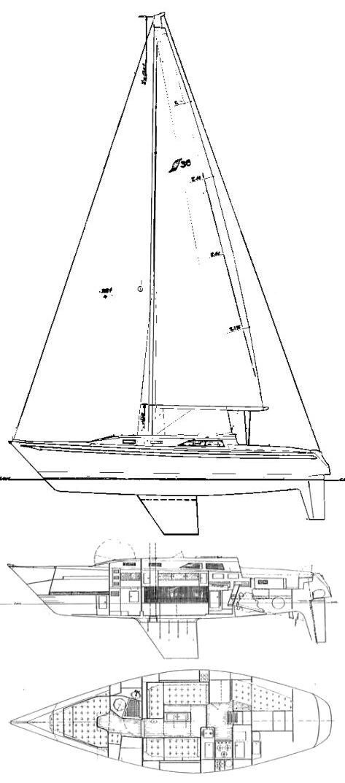 SCEPTRE 36 drawing