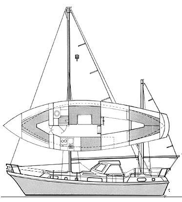 SEAFORTH 36 drawing