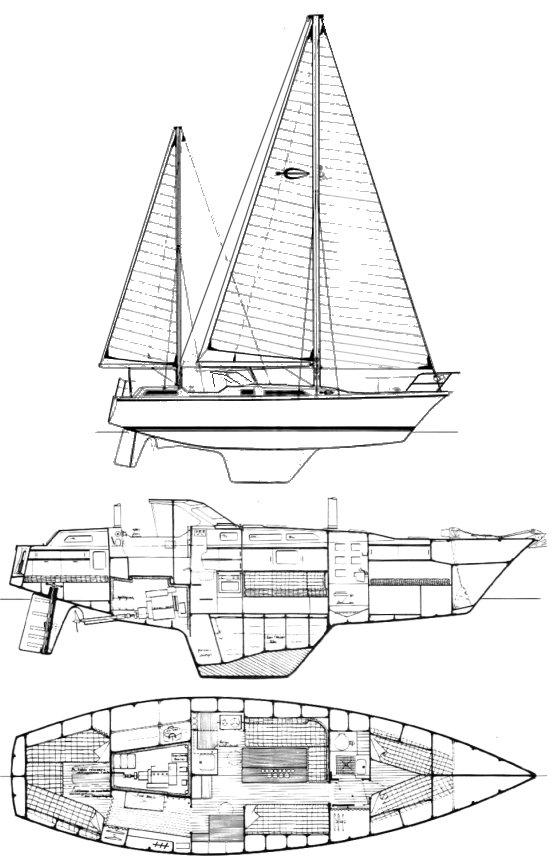 SHARKI 39 (AMEL) drawing