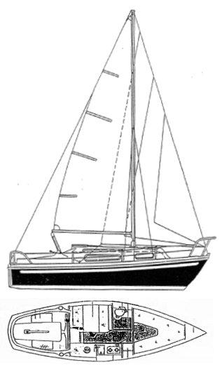 SNAPDRAGON 24 drawing