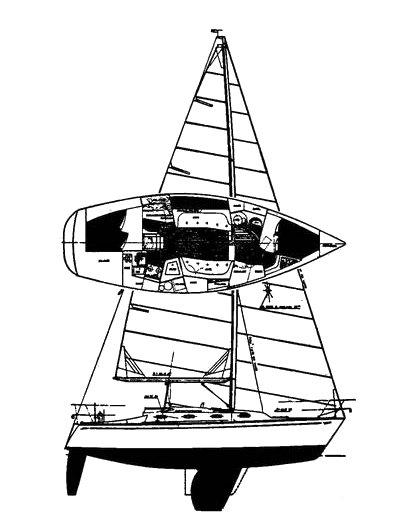 TARTAN 31 drawing