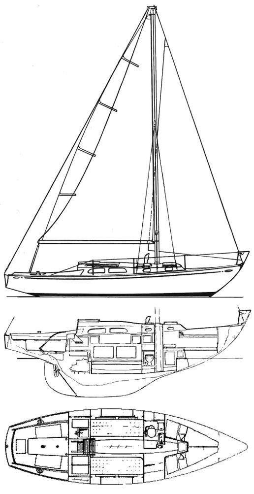 TRIPP LENTSCH 29 drawing