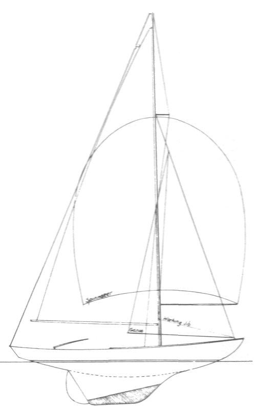 VINEYARD 21 drawing
