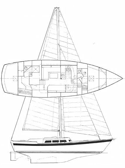 WELLINGTON 44 drawing