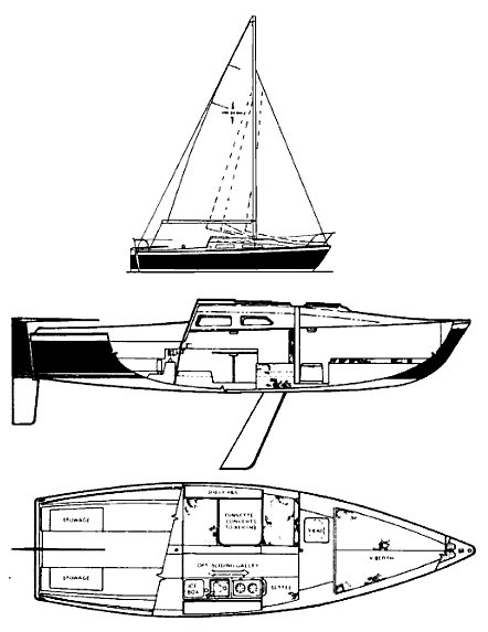 WINDROSE 24 drawing