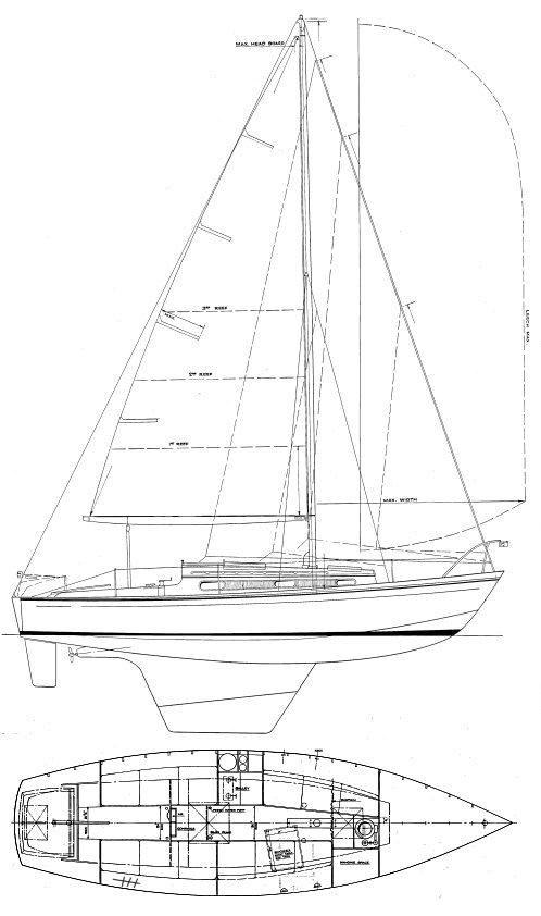 YACHTING WORLD SEAHORSE drawing