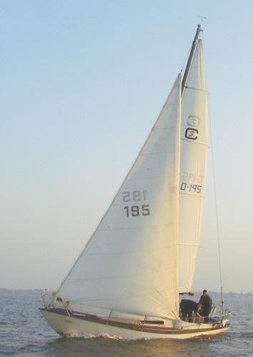 COMMANDER 31 (BIANCA) photo