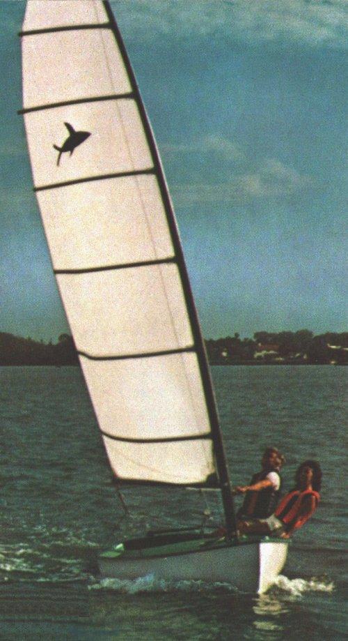 FLYING FISH photo