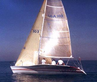 KIWI 35 photo