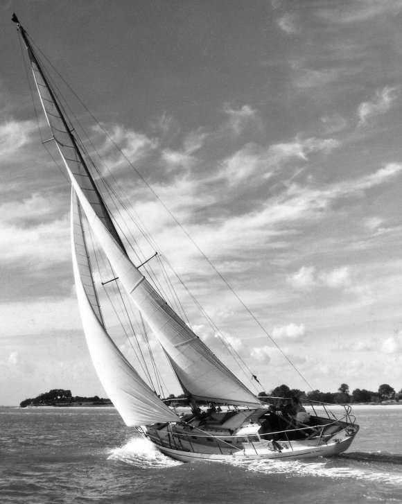 Lion 36 (Robb) photo on sailboatdata.com