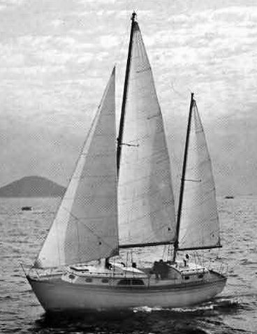 MIDSHIPMAN 36 (CHEOY LEE) photo