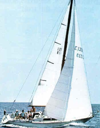 puma 34