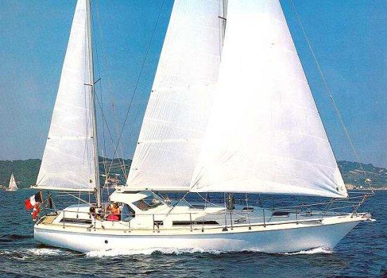 SHARKI 39 (AMEL) photo